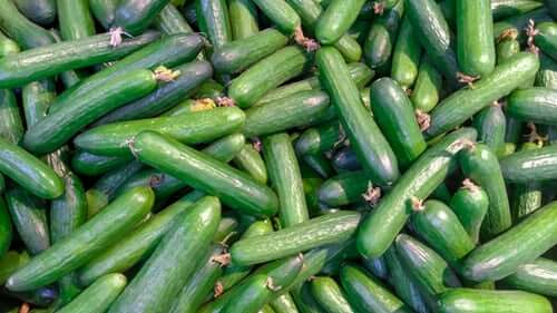 Side-effects-of-cucumber-juice